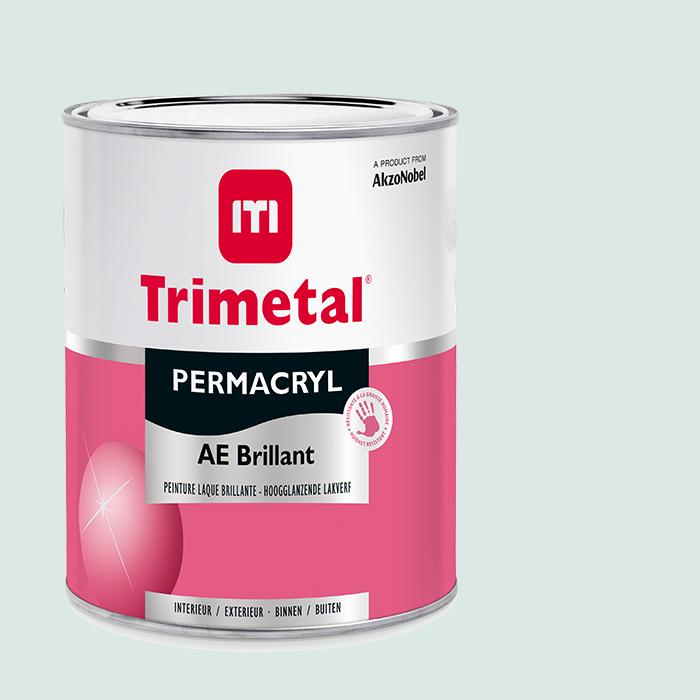 Permacryl-AE-Brilliant1l