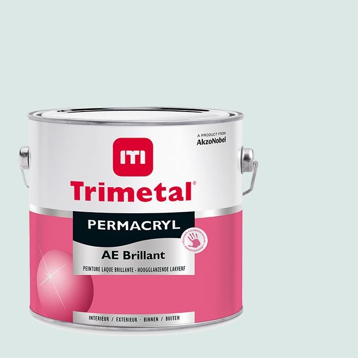 Permacryl-AE-Brilliant